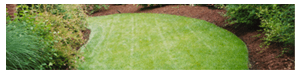 mulch your yard affordably with crew cuts lawn care