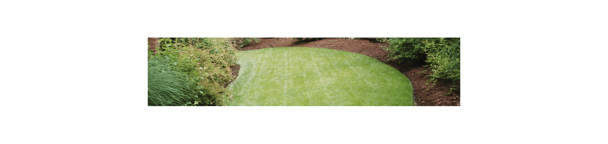 keep your yard in hoa compliance with crew cuts lawn care