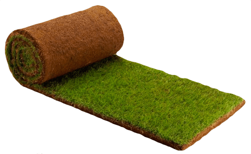 crew cuts lawn care can seed your lawn in lafayette indiana
