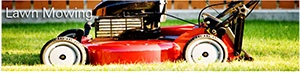 crew cuts lawn care offers affordable lawn mowing services