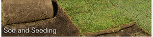 affordably sod and seed your lafayette lawn with crew cuts lawn care