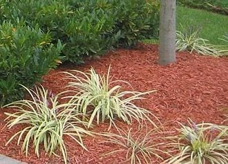 crew cuts lawn care offers expert mulching services