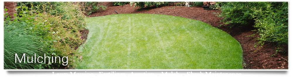 mulching is important to your yards health see how crew cuts can mulch your yard